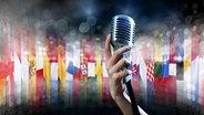 Mikrofon mit Europa Flaggen © fotolia Fotograf: adam121, mrallen